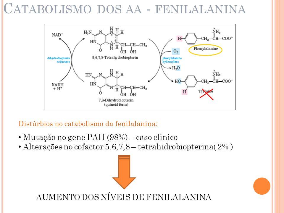 C ATABOLISMO DOS AA - FENILALANINA Distúrbios no catabolismo da fenilalanina: Mutação no gene PAH (98%) – caso clínico Alterações no cofactor 5,6,7,8