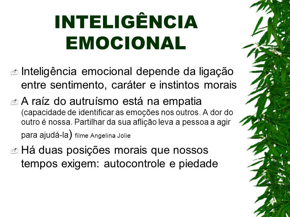 INTELIGÊNCIA EMOCIONAL Inteligência emocional depende da ligação entre sentimento, caráter e instintos morais A raíz do autruísmo está na empatia (cap