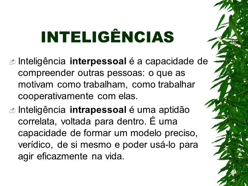 INTELIGÊNCIAS Inteligência interpessoal é a capacidade de compreender outras pessoas: o que as motivam como trabalham, como trabalhar cooperativamente