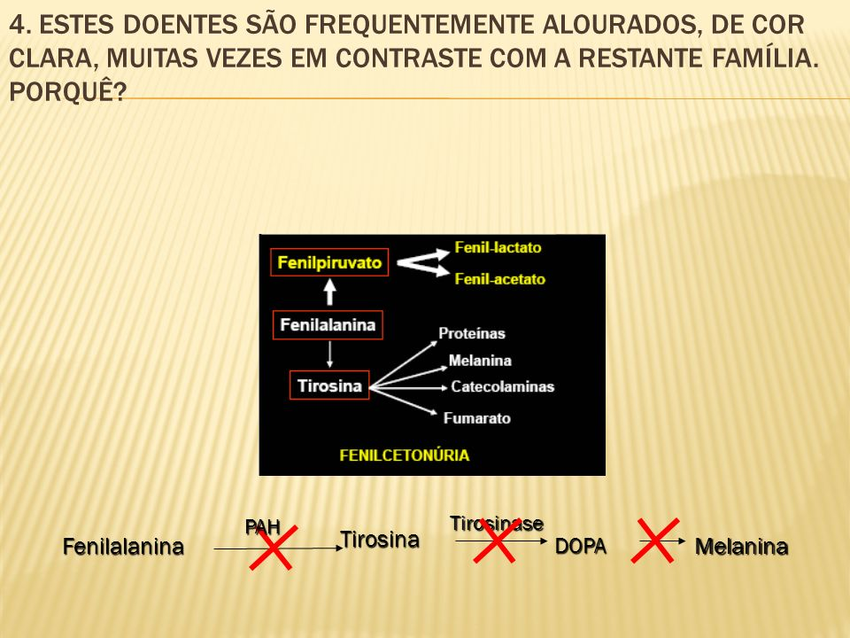 4. ESTES DOENTES SÃO FREQUENTEMENTE ALOURADOS, DE COR CLARA, MUITAS VEZES EM CONTRASTE COM A RESTANTE FAMÍLIA. PORQUÊ?Fenilalanina Tirosina DOPAMelani