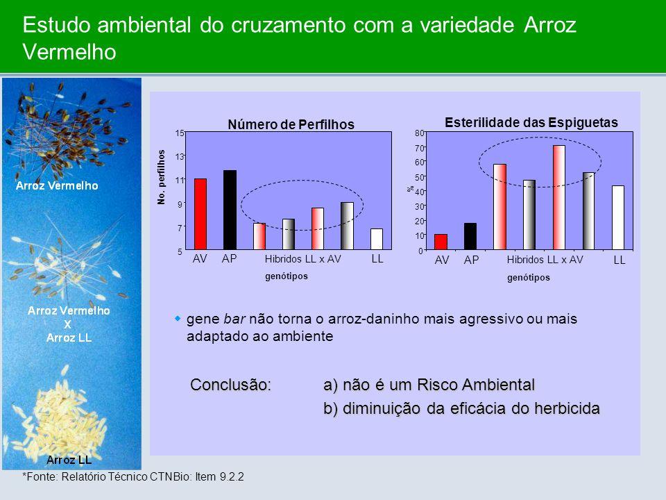 Estudo ambiental do cruzamento com a variedade Arroz Vermelho *Fonte: Relatório Técnico CTNBio: Item 9.2.2 AVAP Hibridos LL x AV LL genótipos No. perf