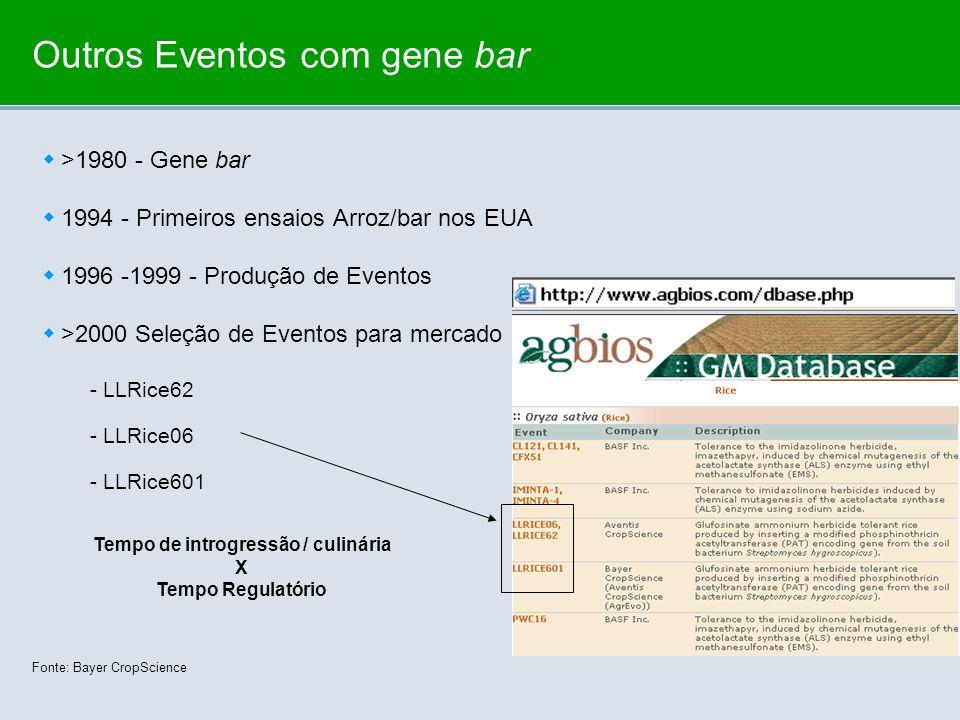 Outros Eventos com gene bar >1980 - Gene bar 1994 - Primeiros ensaios Arroz/bar nos EUA 1996 -1999 - Produção de Eventos >2000 Seleção de Eventos para