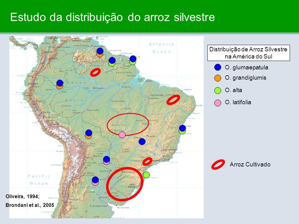 Distribuição de Arroz Silvestre na América do Sul O. glumaepatula O. grandiglumis O. alta O. latifolia Arroz Cultivado Estudo da distribuição do arroz