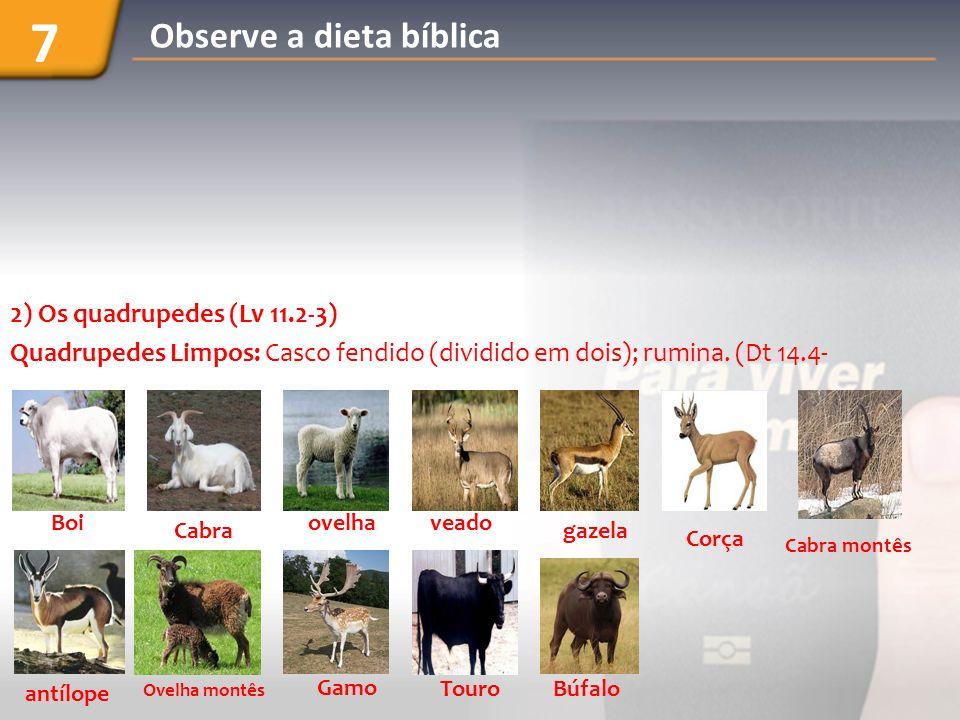 2) Os quadrupedes (Lv 11.2-3) Quadrupedes Limpos: Casco fendido (dividido em dois); rumina. (Dt 14.4- Boi Cabra ovelhaveado Corça gazela Cabra montês