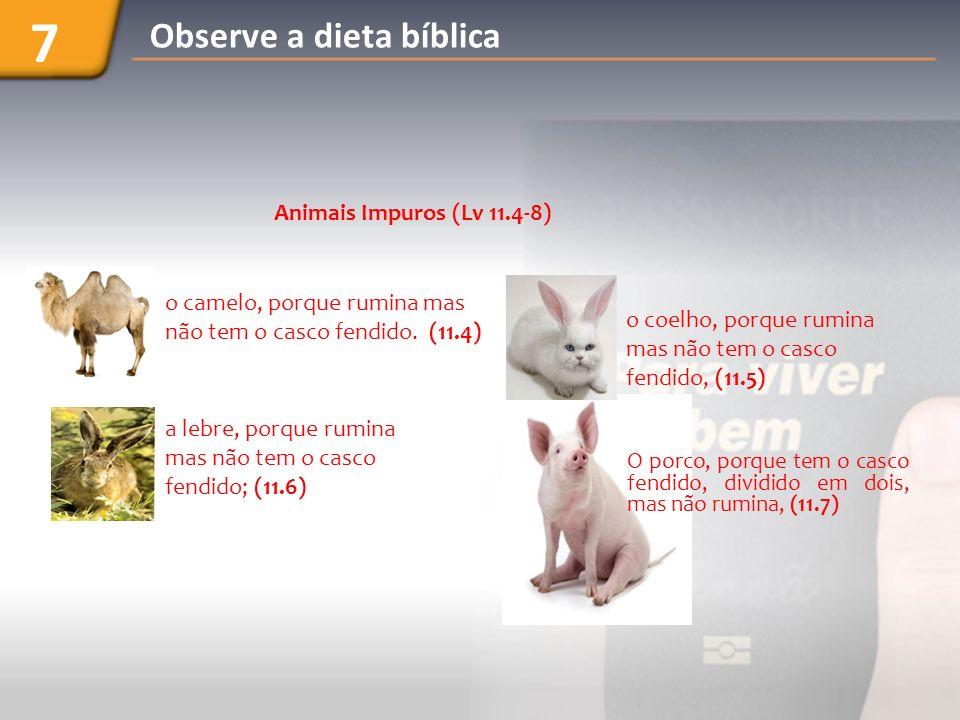 Levíticos 11.9-12; Deuteronômio 14.9-10 Peixes 7 Observe a dieta bíblica