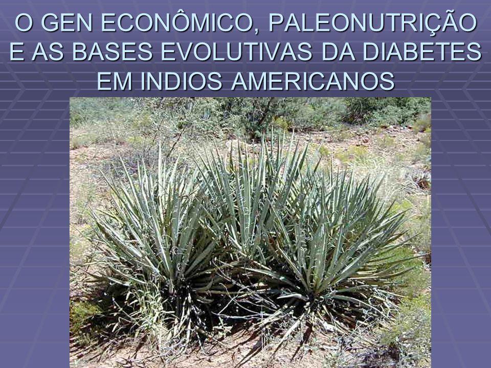 Obesidade e diabetes tipo 2 são problemas críticos para os Nativos Americanos.
