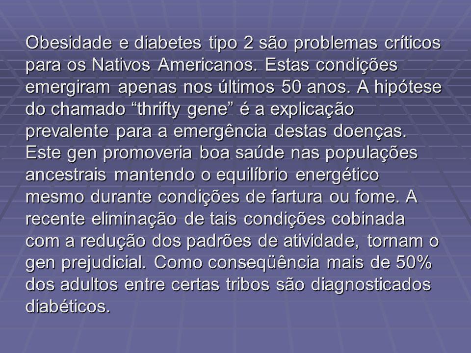 Obesidade e diabetes tipo 2 são problemas críticos para os Nativos Americanos. Estas condições emergiram apenas nos últimos 50 anos. A hipótese do cha