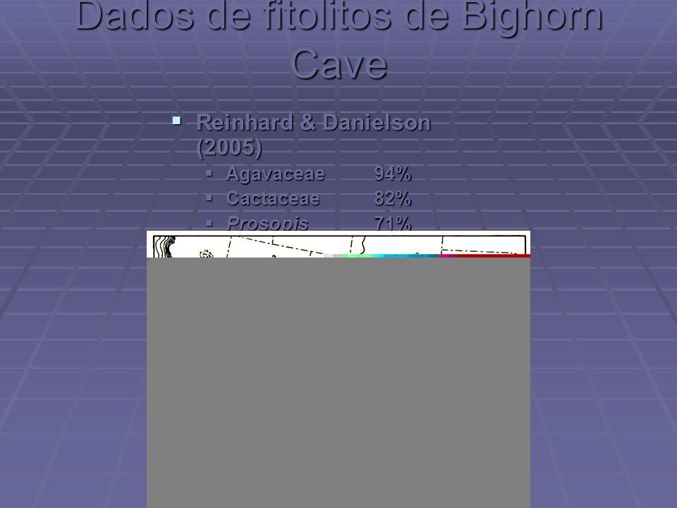 Dados de fitolitos de Bighorn Cave Reinhard & Danielson (2005) Reinhard & Danielson (2005) Agavaceae 94% Agavaceae 94% Cactaceae 82% Cactaceae 82% Pro