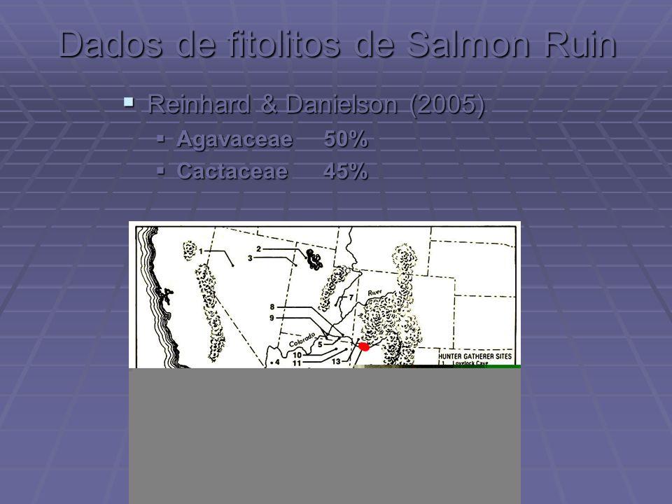 Dados de fitolitos de Salmon Ruin Reinhard & Danielson (2005) Reinhard & Danielson (2005) Agavaceae50% Agavaceae50% Cactaceae45% Cactaceae45%