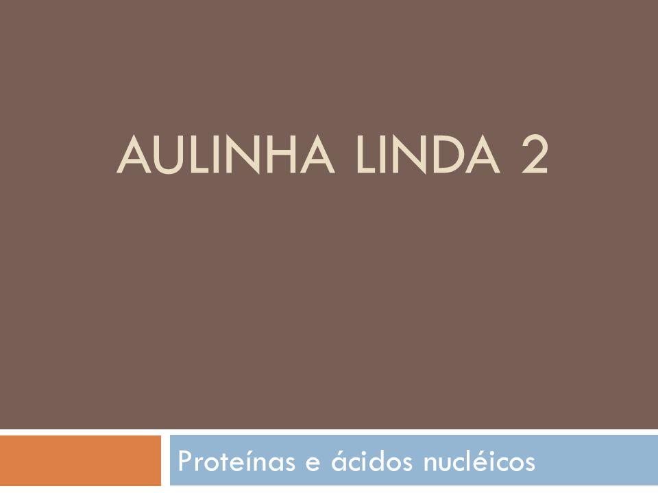 AULINHA LINDA 2 Proteínas e ácidos nucléicos