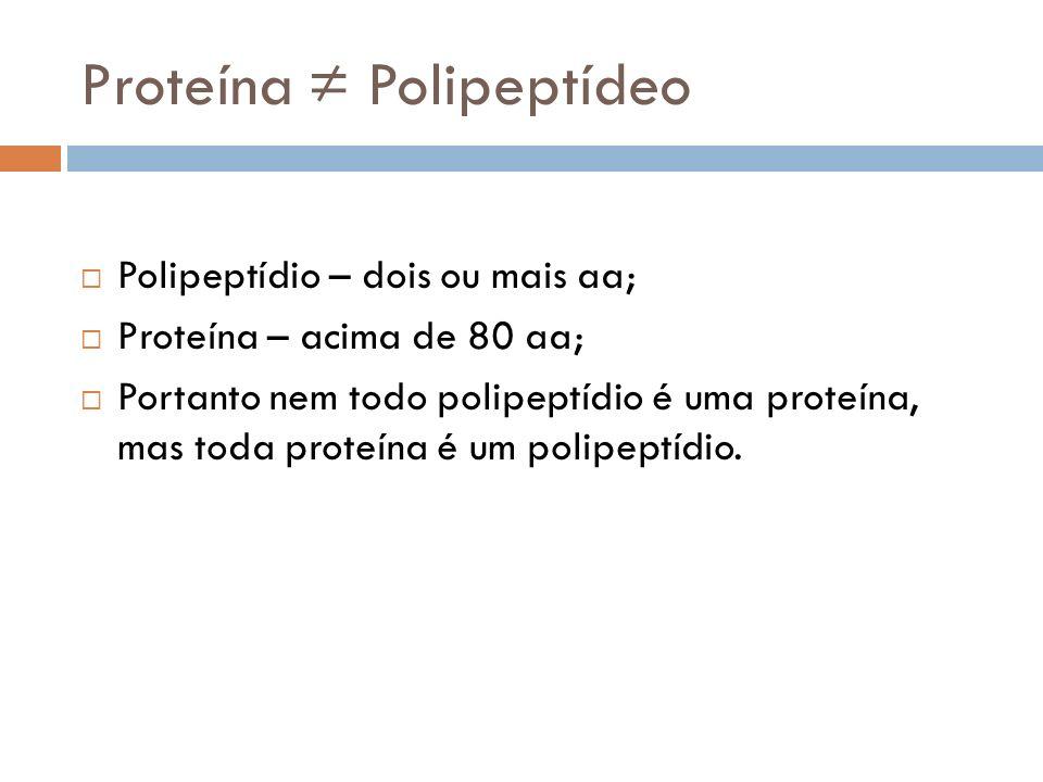 Proteína Polipeptídeo Polipeptídio – dois ou mais aa; Proteína – acima de 80 aa; Portanto nem todo polipeptídio é uma proteína, mas toda proteína é um