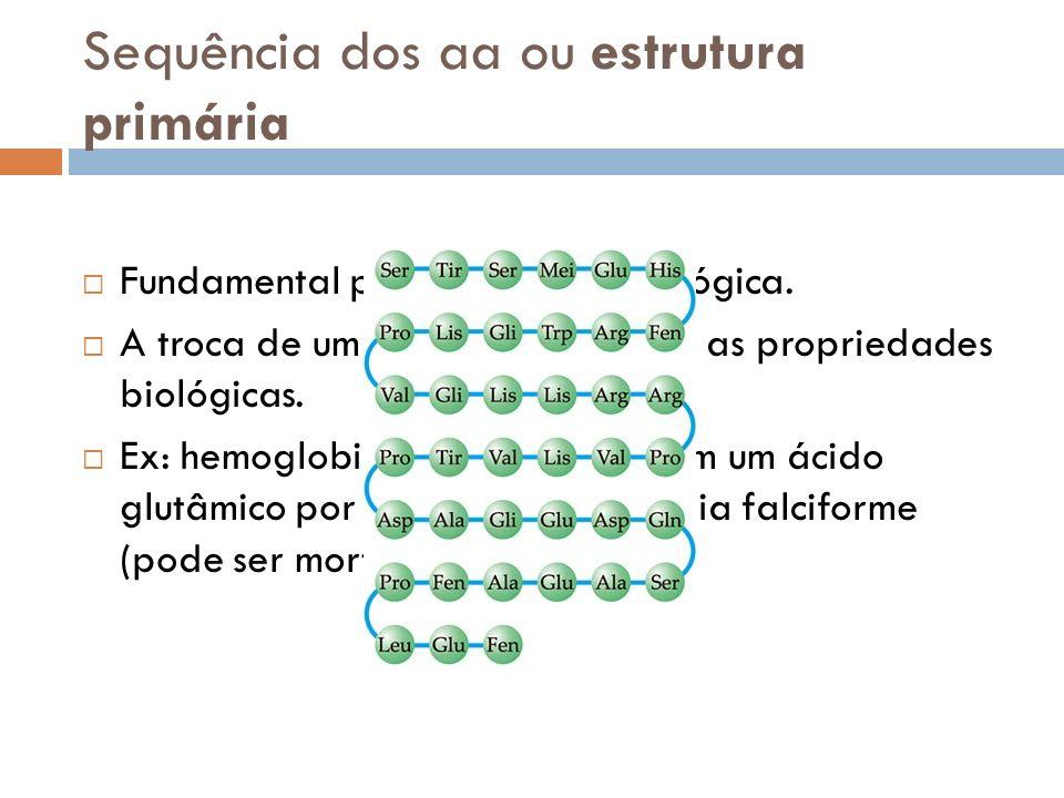 Sequência dos aa ou estrutura primária Fundamental para atividade biológica. A troca de um aa pode modificar as propriedades biológicas. Ex: hemoglobi