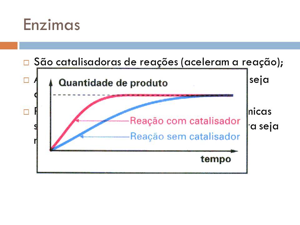 Enzimas São catalisadoras de reações (aceleram a reação); A enzima faz com que o ponto de equilíbrio seja atingido mais rapidamente; Permitem que a ve