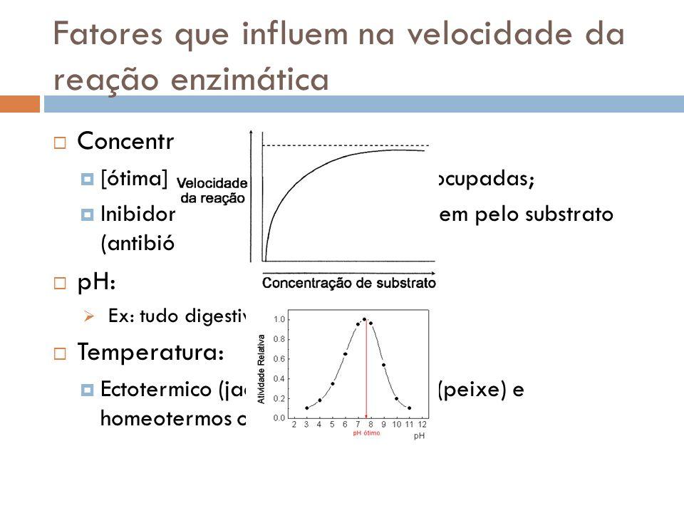 Fatores que influem na velocidade da reação enzimática Concentração do substrato: [ótima] = todas as enzimas estão ocupadas; Inibidores por competição