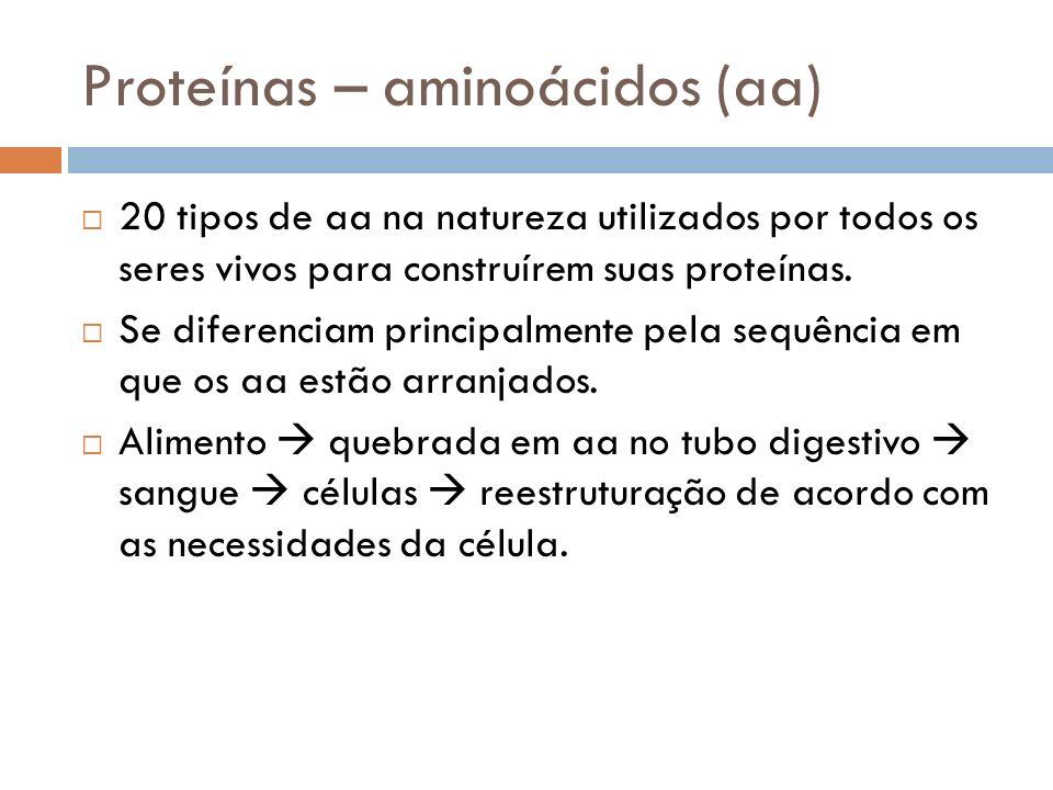 Proteínas – aminoácidos (aa) 20 tipos de aa na natureza utilizados por todos os seres vivos para construírem suas proteínas. Se diferenciam principalm