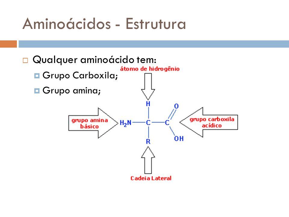 Aminoácidos - Estrutura Qualquer aminoácido tem: Grupo Carboxila; Grupo amina;