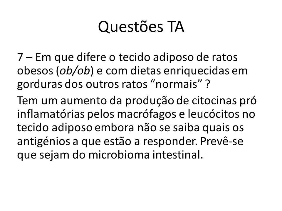 Questões TA 7 – Em que difere o tecido adiposo de ratos obesos (ob/ob) e com dietas enriquecidas em gorduras dos outros ratos normais ? Tem um aumento