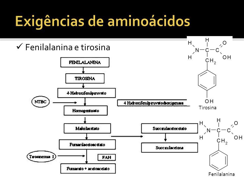 Fenilalanina e tirosina Tirosina Fenilalanina