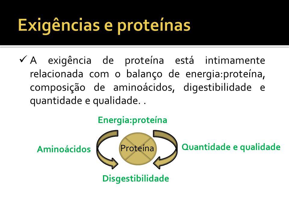 A exigência de proteína está intimamente relacionada com o balanço de energia:proteína, composição de aminoácidos, digestibilidade e quantidade e qual