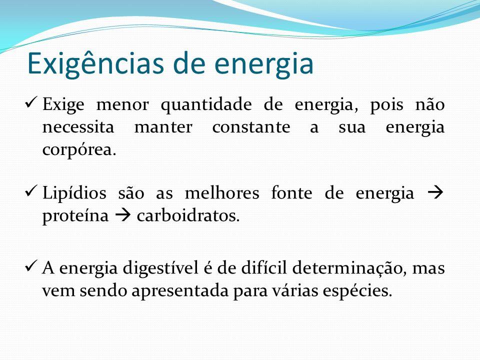 Exigências de energia Exige menor quantidade de energia, pois não necessita manter constante a sua energia corpórea. Lipídios são as melhores fonte de
