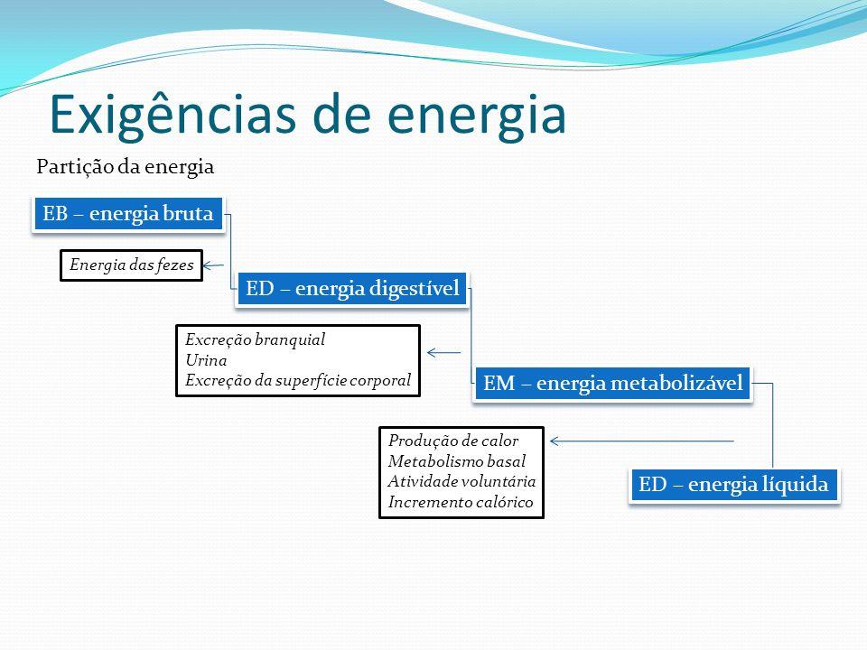 Exigências de energia EB – energia bruta ED – energia digestível EM – energia metabolizável ED – energia líquida Energia das fezes Excreção branquial