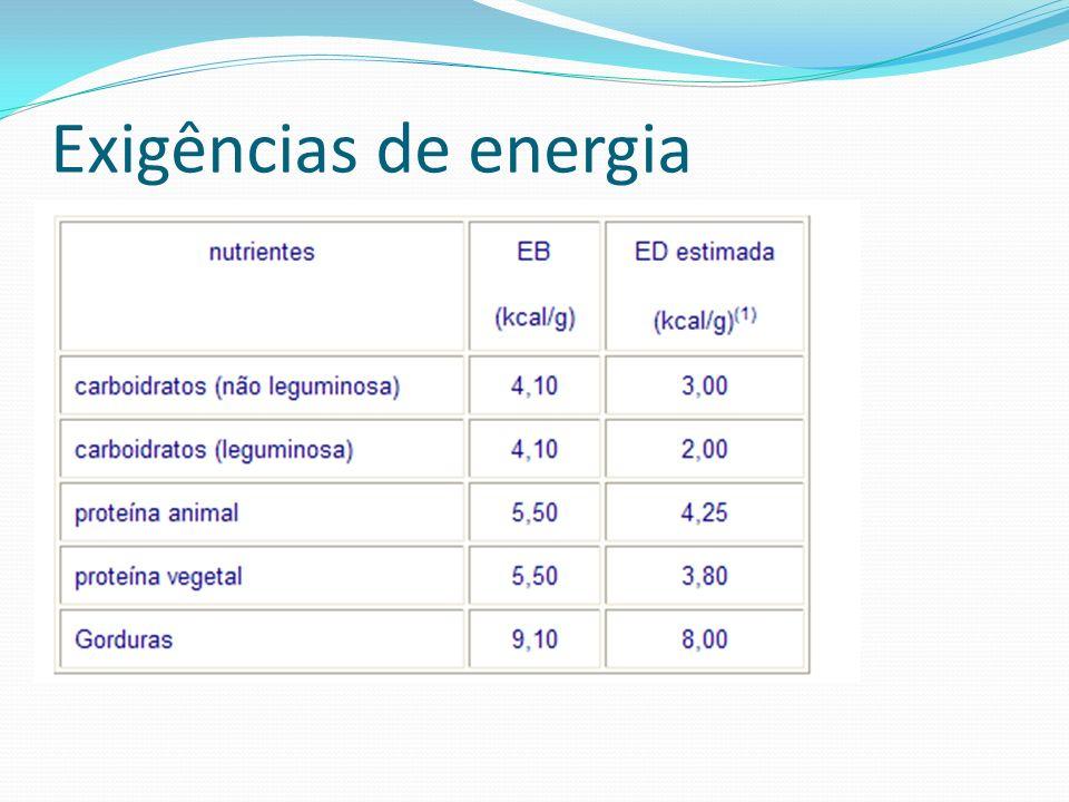 Exigências de energia