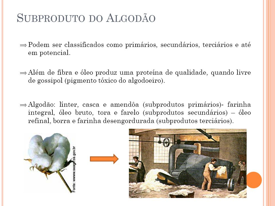 S UBPRODUTO DO A LGODÃO Podem ser classificados como primários, secundários, terciários e até em potencial. Além de fibra e óleo produz uma proteína d