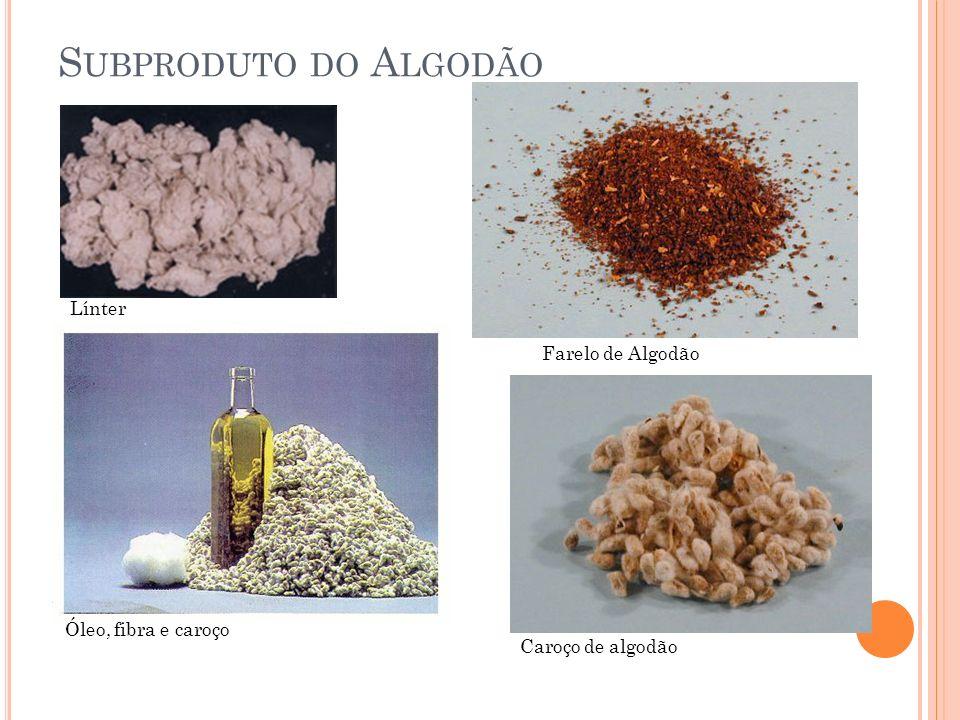 S UBPRODUTO DO A LGODÃO Línter Farelo de Algodão Caroço de algodão Óleo, fibra e caroço