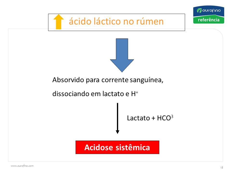 www.ourofino.com 18 ácido láctico no rúmen Absorvido para corrente sanguínea, dissociando em lactato e H + Acidose sistêmica Lactato + HCO 3