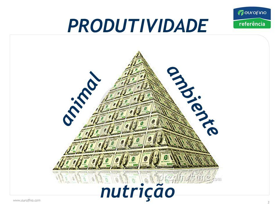 www.ourofino.com 3 PRODUTIVIDADE animal nutrição ambiente