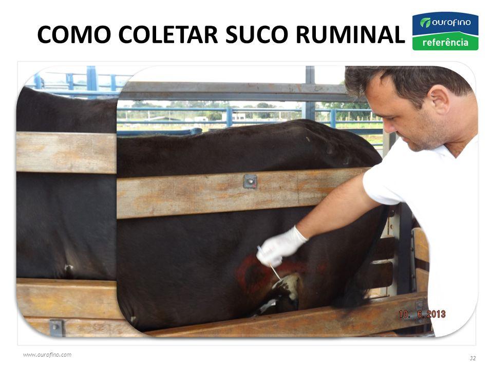 www.ourofino.com 32 COMO COLETAR SUCO RUMINAL ?