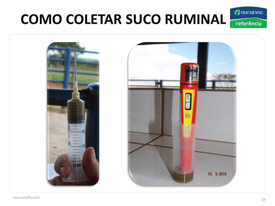 www.ourofino.com 34 COMO COLETAR SUCO RUMINAL ?