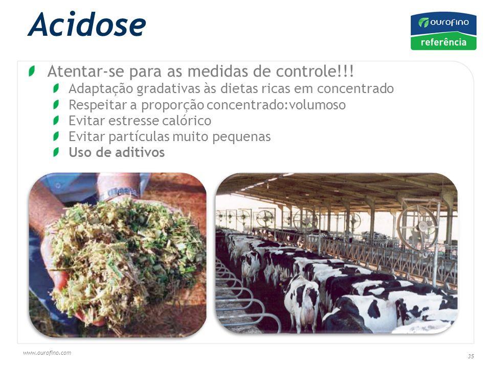 www.ourofino.com 35 Acidose Saccharomyces cerevisae Atentar-se para as medidas de controle!!.