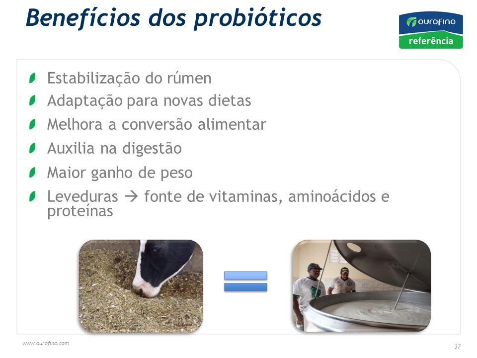 www.ourofino.com 37 Benefícios dos probióticos Estabilização do rúmen Adaptação para novas dietas Melhora a conversão alimentar Auxilia na digestão Maior ganho de peso Leveduras fonte de vitaminas, aminoácidos e proteínas