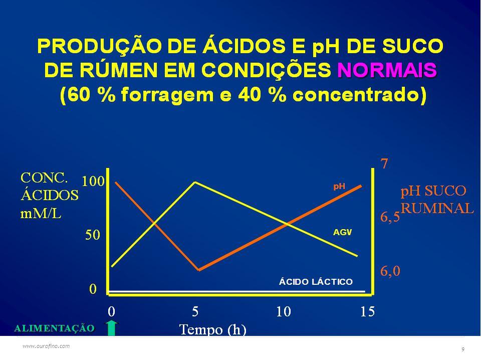 www.ourofino.com 40 Efeitos do uso de probiótico na alimentação de vacas leiteiras Digestão in situ de silagem de milho Fonte: NUPEEC - UFPel