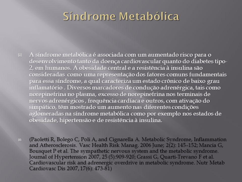 A síndrome metabólica é associada com um aumentado risco para o desenvolvimento tanto da doença cardiovascular quanto do diabetes tipo- 2, em humanos.