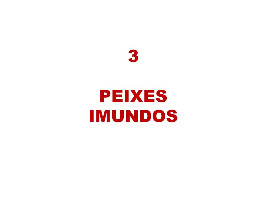 3 PEIXES IMUNDOS