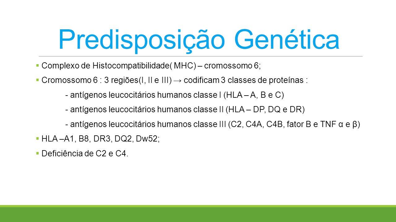 Predisposição Genética Complexo de Histocompatibilidade( MHC) – cromossomo 6; Cromossomo 6 : 3 regiões(I, II e III) codificam 3 classes de proteínas :