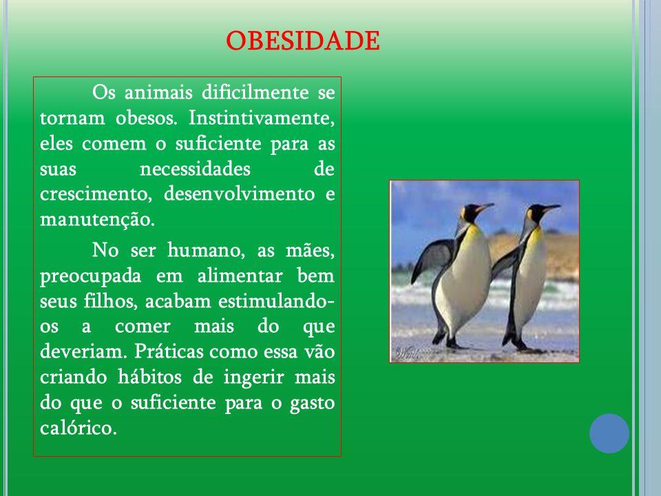 Os animais dificilmente se tornam obesos. Instintivamente, eles comem o suficiente para as suas necessidades de crescimento, desenvolvimento e manuten