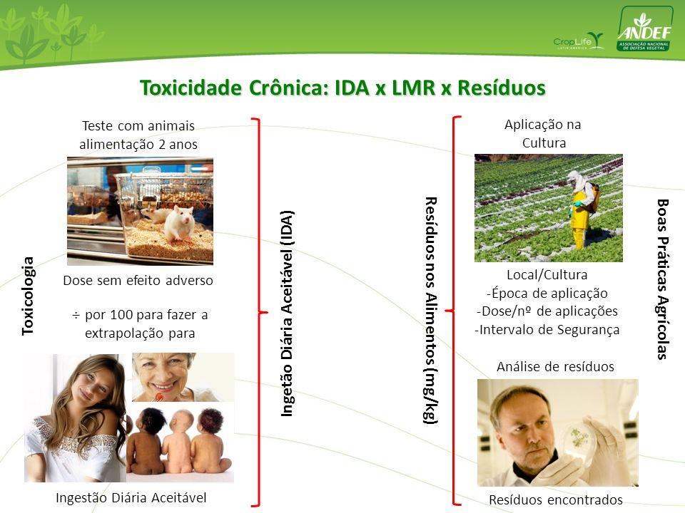 NOAEL (Nivel Sem Efeito Adverso Observável) Fatores de segurança NOAEL / 100 = IDA Ingestão Diaria Aceitável Avaliação da Exposição Alimentar Conteúdo
