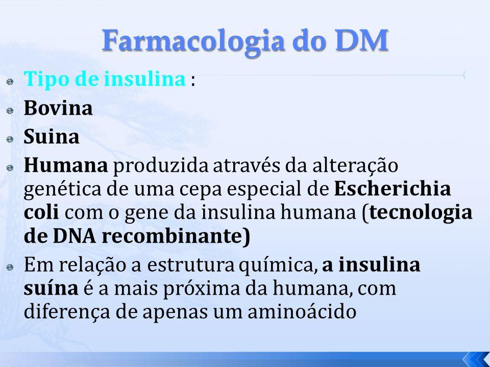 Tipo de insulina : Bovina Suina Humana produzida através da alteração genética de uma cepa especial de Escherichia coli com o gene da insulina humana