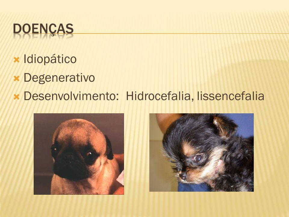 Brometo de Potássio/sodio eliminado pelos rins, não causa hepatotoxidade 22mg/kg oral BID - cães e 15mg/kg BID oral – gatos (máx59 mg/kg BID) devera ser manipulado usar luvas meia vida é longa cuidado com cloreto na dieta