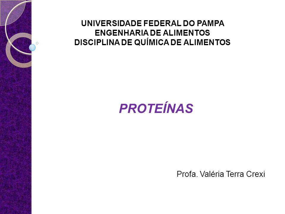 UNIVERSIDADE FEDERAL DO PAMPA ENGENHARIA DE ALIMENTOS DISCIPLINA DE QUÍMICA DE ALIMENTOS PROTEÍNAS Profa. Valéria Terra Crexi