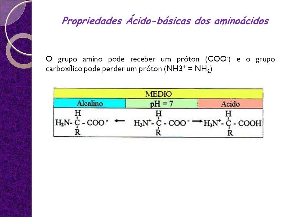 O grupo amino pode receber um próton (COO - ) e o grupo carboxílico pode perder um próton (NH3 + = NH 2 ) Propriedades Ácido-básicas dos aminoácidos