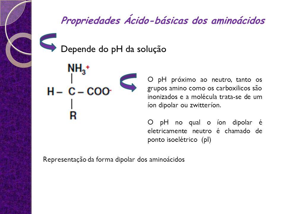 Representação da forma dipolar dos aminoácidos Depende do pH da solução O pH próximo ao neutro, tanto os grupos amino como os carboxilicos são inoniza