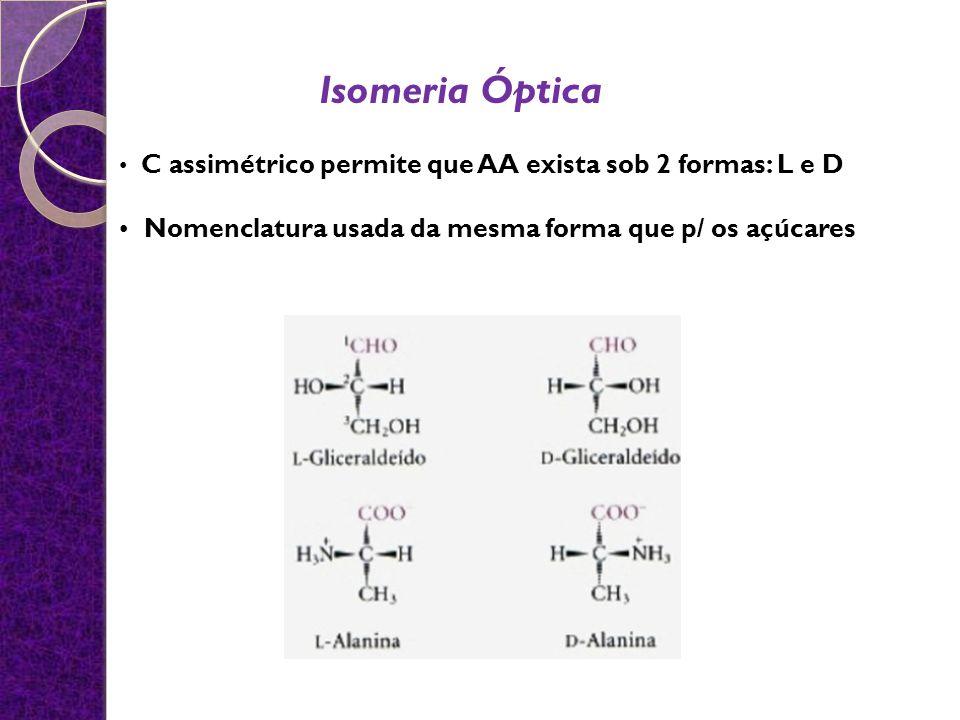 C assimétrico permite que AA exista sob 2 formas: L e D Nomenclatura usada da mesma forma que p/ os açúcares Isomeria Óptica