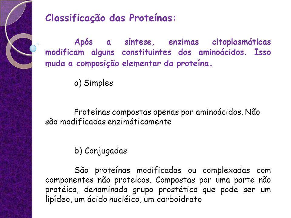 Classificação das Proteínas: Após a síntese, enzimas citoplasmáticas modificam alguns constituintes dos aminoácidos. Isso muda a composição elementar