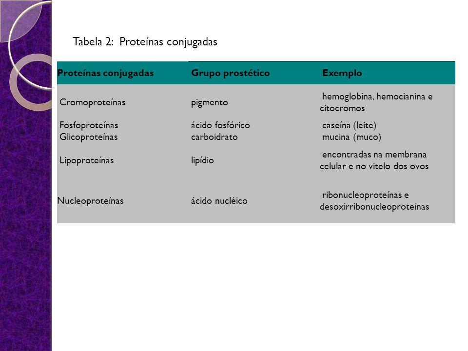 Proteínas conjugadas Grupo prostético Exemplo Cromoproteínas pigmento hemoglobina, hemocianina e citocromos Fosfoproteínas ácido fosfórico caseína (le