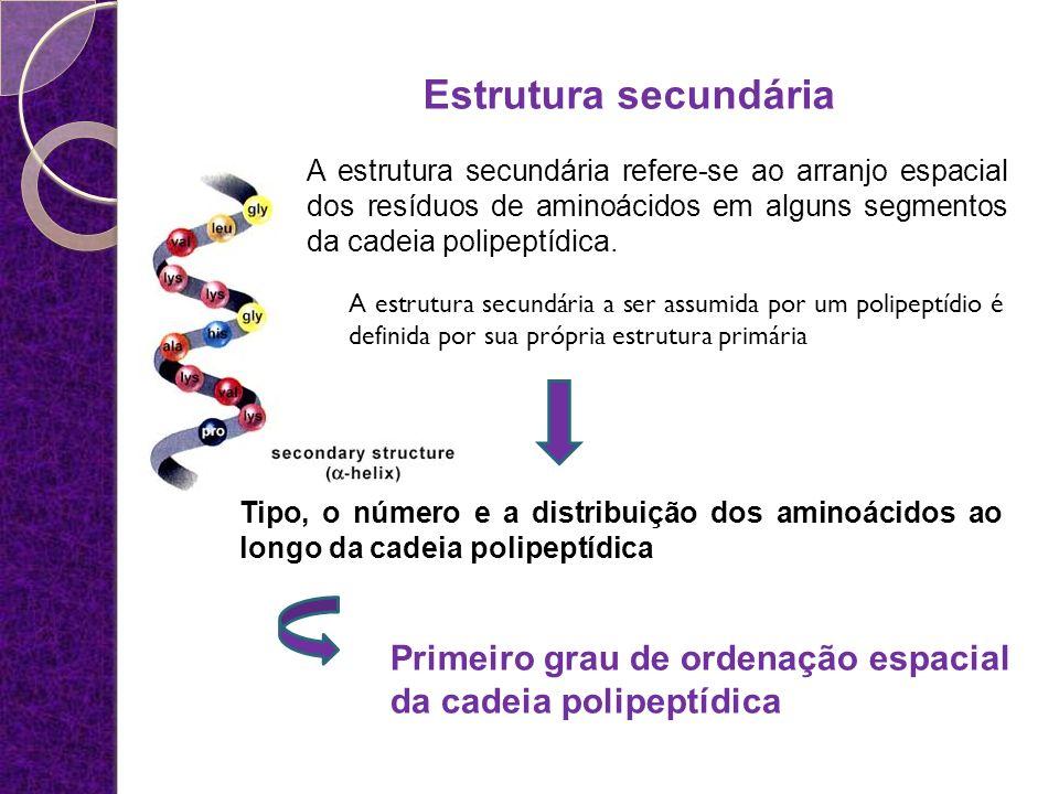 Estrutura secundária A estrutura secundária refere-se ao arranjo espacial dos resíduos de aminoácidos em alguns segmentos da cadeia polipeptídica. Tip