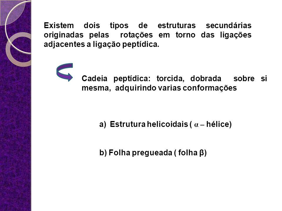 Existem dois tipos de estruturas secundárias originadas pelas rotações em torno das ligações adjacentes a ligação peptídica. a)Estrutura helicoidais (